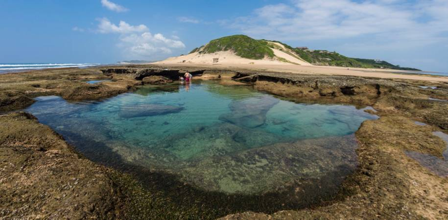 Explore the rock pools