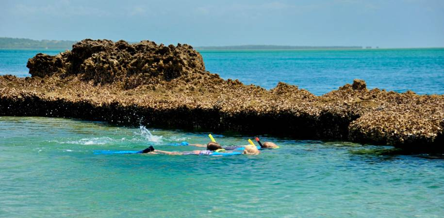 Snorkel in crystal waters