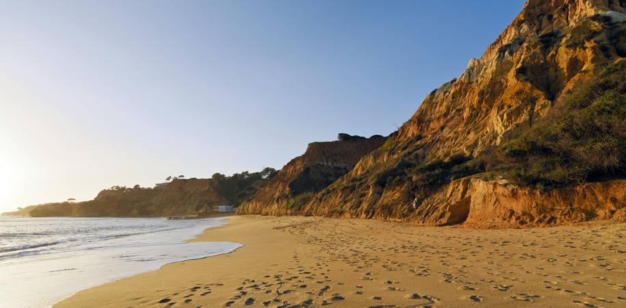 The fine sand beach