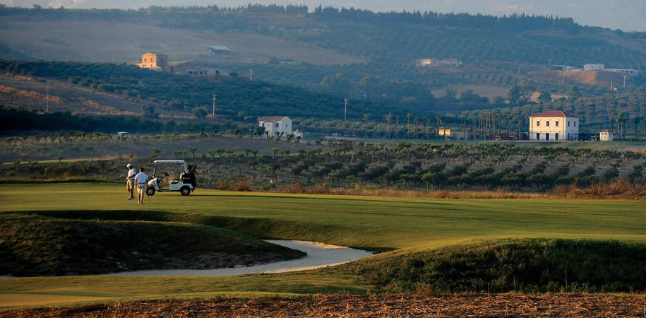 Golf surrounded by olive and lemon groves