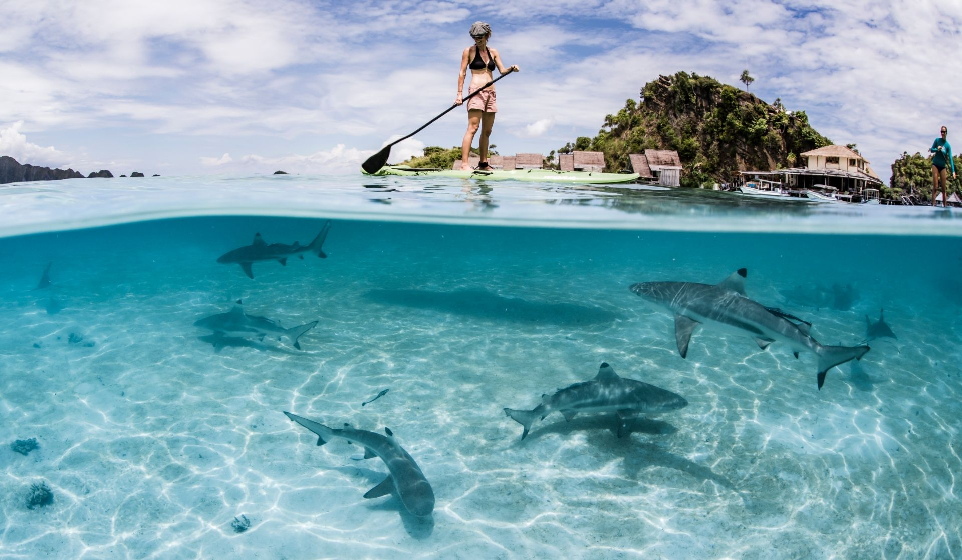Stand Up Paddle (Photo Credit Shawn Heinrichs)