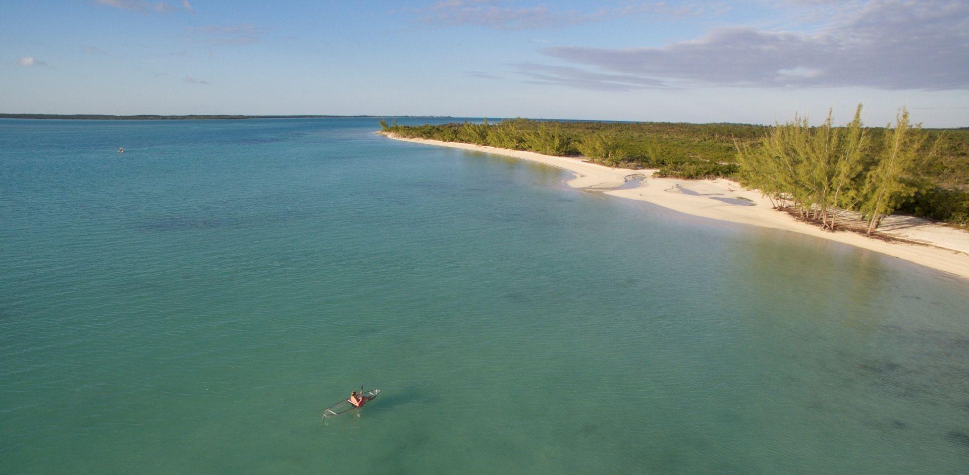 Explore the coast and mangroves