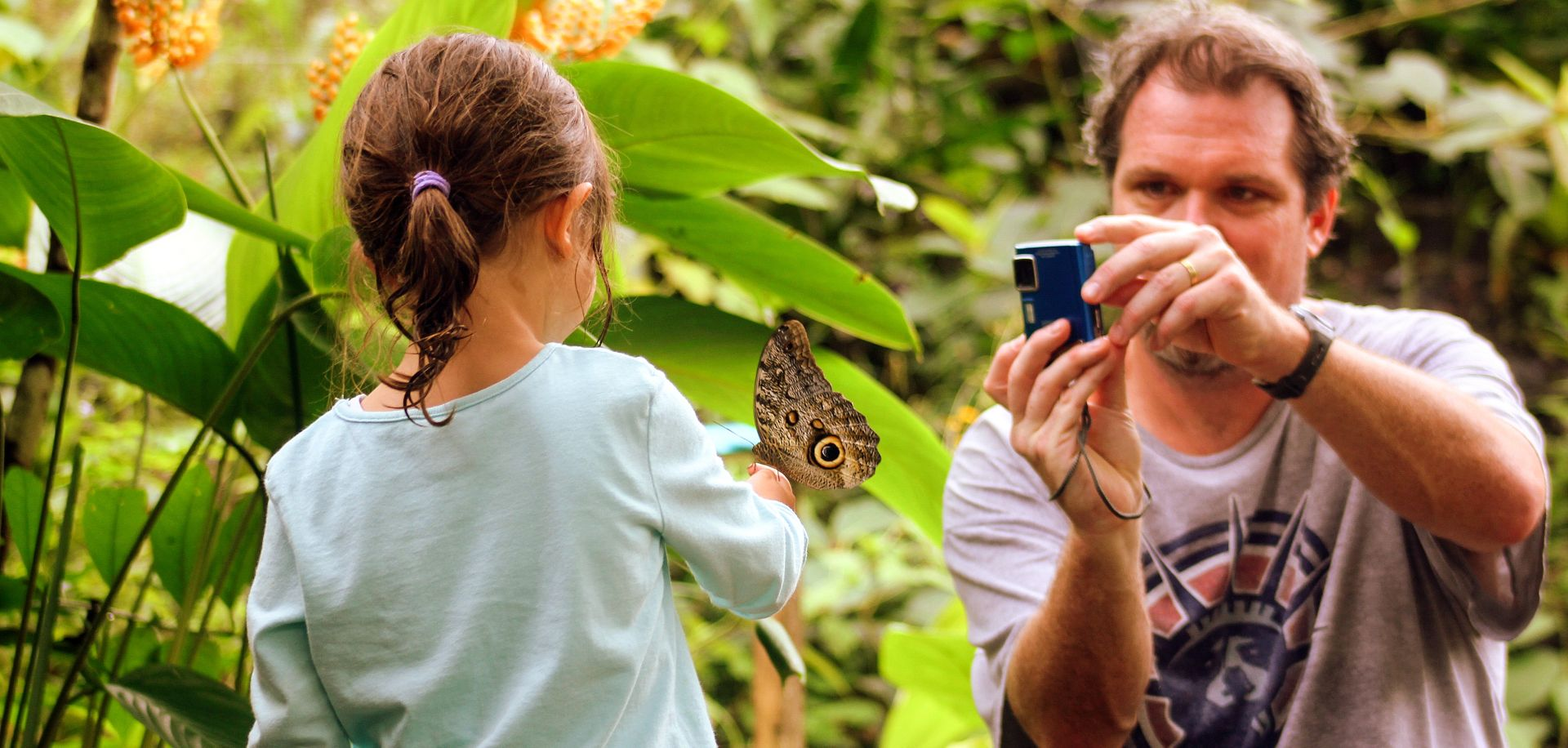 Butterfly breeding centre