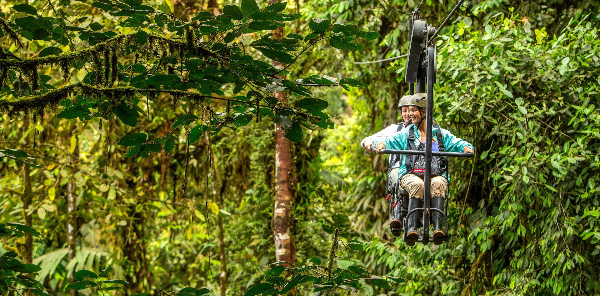 Sky bike your way through the forest canopy