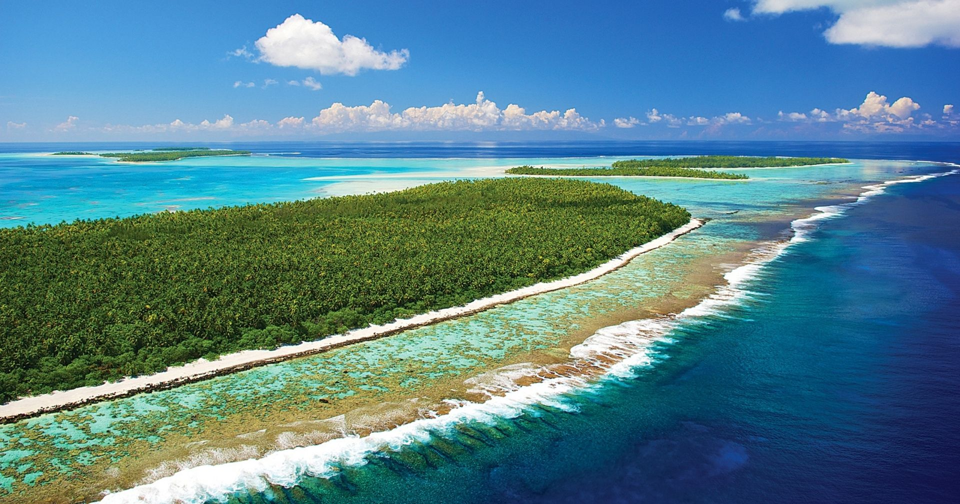 Coral reefs like no other